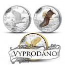 Orel bělohlavý - významný symbol fauny Severní Ameriky