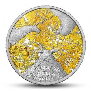 Atraktivní vyobrazení kanadského javorového stromu na kolorované minci (zlatý podzim)