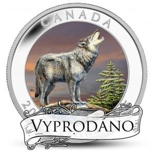 Vlk kanadský - symbol kandské přírody na atraktivní mincí s vyjímečnou ryzostí