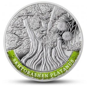 Nejstarší a nejpamátnější stromy světa - Platan