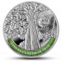 Nejstarší a nejpamátnější stromy světa - Obří sekvoj Sherman