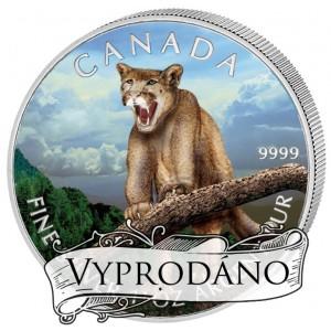Puma - symbol nezkrotné kanadské fauny
