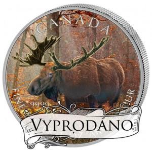 Los - symbol nezkrotné kanadské fauny