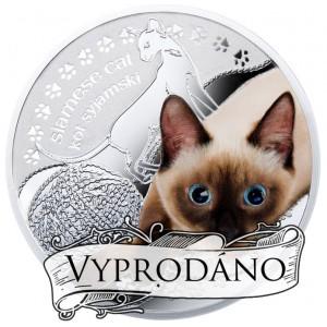 """Siamská kočka ze světově populární série """"Nejlepší přátelé člověka"""""""