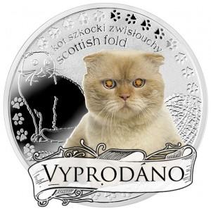 """Skotská klapouchá kočka ze světově populární série """"Nejlepší přátelé člověka"""""""