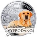 """Labradorský retrívr ze světově populární série """"Nejlepší přátelé člověka"""""""