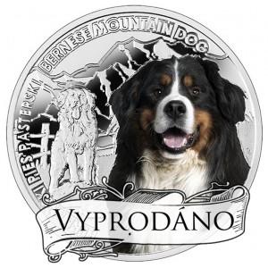 """Bernský salašnický pes z populární série """"Nejlepší přátelé člověka"""""""