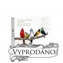 Nejkrásnější pestrobarevní pěvní ptáci Kanady - atraktivní stříbrná sada s hrajícím boxem