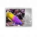 Gramma královská - vzácná tropická korálová ryba ze série zázraky podmořského světa