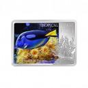 Modrá tang ryba - vzácná tropická korálová ryba ze série zázraky podmořského světa