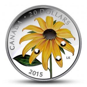 Třapatka srstnatá(Rudbeckia hirta) - mincovní skvost se třemi krystaly Swarovski ve tvaru kapek ranní rosy
