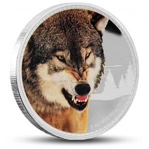 Šedý vlk z populární série vládci kontinentů