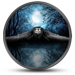 Fascinující noční dravec sova - exkluzivní mince zušlechtěna platinou