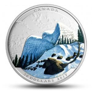 Krajinná iluze v podobě sněžné sovy - atraktivní a originální  mincovní unikát