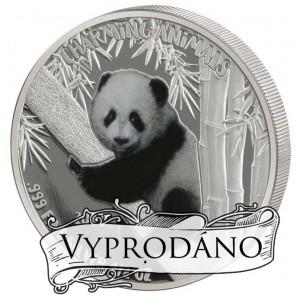 Mládě pandy velké na atraktivní stříbrné minci