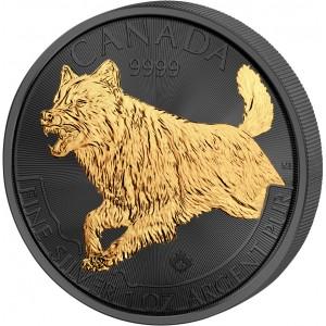 Vlk kanadský na stříbrné mincí zušlechtěné černým rutheniem a ryzím zlatem