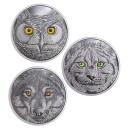 Výr virginský s očima svítícími ve tmě na atraktivní stříbrné minci