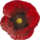 Symbol a památka padlým vojákům první světové války - vzpomínkový vlčí mák