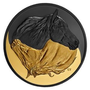 Kanadský teplokrevník na atraktivní stříbrné minci zušlechtěné ryzím zlatem a vzácným černým rhodiem