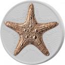 Mořská hvězdice - mincovní unikát zušlechtěný růžovým zlatem a speciální matnou keramikou