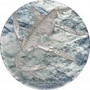 Prehistorické zvíře Plesiosaurius na atraktivní a originálně zpracované stříbrné minci